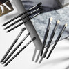 Sigma Deluxe Blending Brush Set 9 st