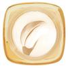 L'Oréal Paris Nutri Gold Extraordinary Oil-Cream 50 ml