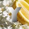 Yves Saint Laurent Y Eau Fraîche Eau de Toilette 100 ml