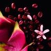 Yves Saint Laurent Black Opium Neon Eau de Parfum 30 ml